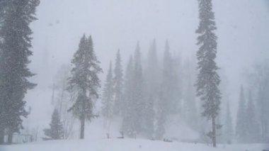 Fuertes nevadas — Vídeo de Stock