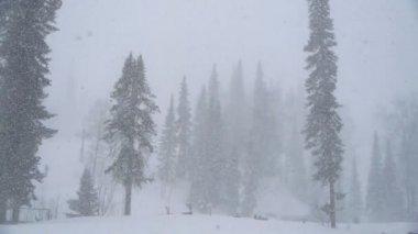 Zware sneeuwval — Stockvideo