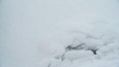 Wipers remove snow — Stock Video