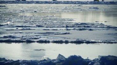 Bir nehir üzerinde buz yüzer — Stok video