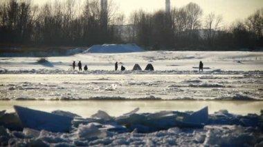 Flutuante de gelo em um rio — Vídeo Stock