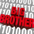 Foto de Stock  : Big Brother Emerges From Computer Code