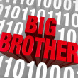 Stock Photo: Big Brother Emerges From Computer Code