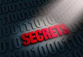 Revealing Computer Secrets — ストック写真