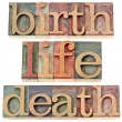 Birth, life, and death words - Foto de Stock
