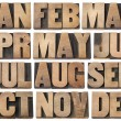 Stock Photo: Calendar concept - months in wood type