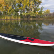 Stand up paddleboard — Photo