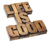 Hayat iyi - pozitifliği kavramı — Stok fotoğraf