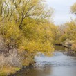 Cache lPoudre River — Stock Photo #13951745