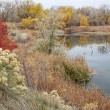 Gravel pit into natural area — Stock Photo