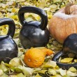 Iron kettlebells outdoors — Stock Photo #14050581