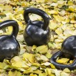 Iron  kettlebells outdoors — Stock Photo