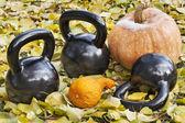 Iron kettlebells outdoors — Stock Photo