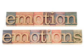 Emotion in wood type — Stock Photo