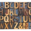 Stock Photo: Alphabet in antique wood type