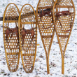Stock Photo: Bear Paw and Huron snowshoes