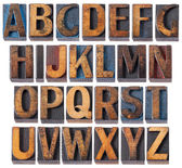 Alphabet in antique wood type — Foto Stock