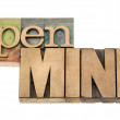 Open mind in wood type - Foto Stock