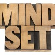 Mindset in wood type — Stock Photo #15429353