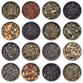 Green, white, black and herbal tea — Stock Photo