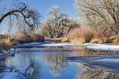 Winter river in Colorado — Stock Photo