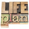 Life plan in wood type — Stock Photo