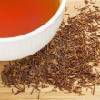 Rooibos red tea — Stock Photo