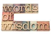 Words of wisdom — Stock Photo