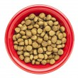 Bowl of dry dog food — Stock Photo
