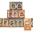 Be the change in wood type — Stock Photo #19252205
