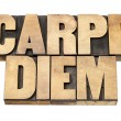 Stock Photo: Carpe Diem in wood type