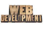 Webbutveckling i träslaget — Stockfoto