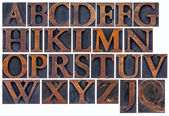 Isolated alphabet in wood type — Stock Photo