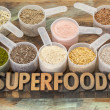 Scoops of superfoods — Stock Photo