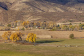 Farmland at Colorado foothills — Stock Photo