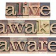 Foto Stock: Alive, awake, aware