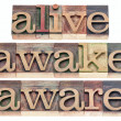 Stock Photo: Alive, awake, aware