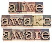 Vivo, acordado, consciente — Foto Stock