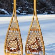 Stock Photo: Vintage Huron snowshoes