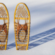 Stock Photo: Bear Paw snowshoes