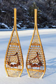 Vintage Huron snowshoes — Stock Photo