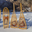 Vintage snowshoes - Stock Photo