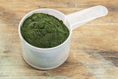 Hawaiian spirulina powder — Stock Photo