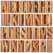 Letterpress wood type alphabet — Stock Photo