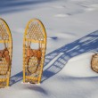 Stock Photo: Bear Paw classic snowshoes