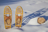 Bear Paw classic snowshoes — Stock Photo