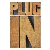 Plugin (plug-in) in wood type — Stock Photo