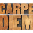 Carpe Diem in wood type - Stock Photo