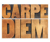 Carpe Diem in wood type — Stok fotoğraf