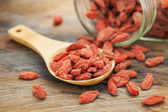Tibetan goji berries — Stock Photo